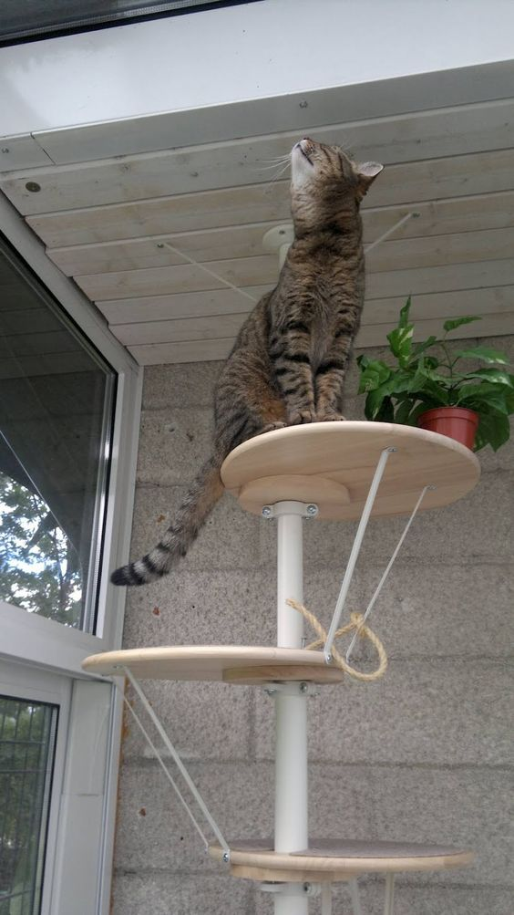 Ikea Cat Tree Cat Trees, Ikea Hackers And Ikea On Pinterest