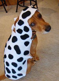 DIY+Dog+Halloween+Costumes | halloween1 | holiday ...