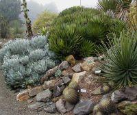Hill landscaping, Landscaping and Landscaping ideas on