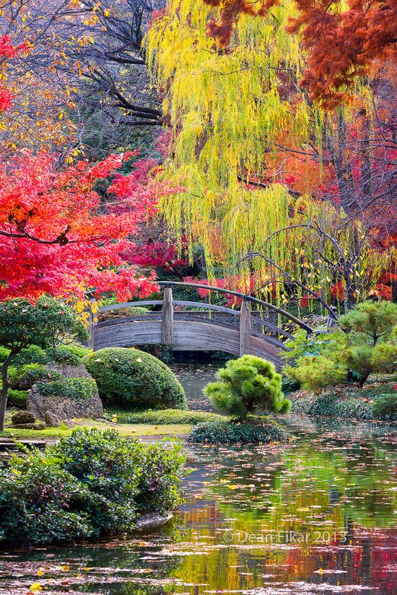 The World's Most #Beautiful Botanical Gardens in #Japan   http://www.ecstasycoffee.com/worlds-beautiful-botanical-gardens-japan/: