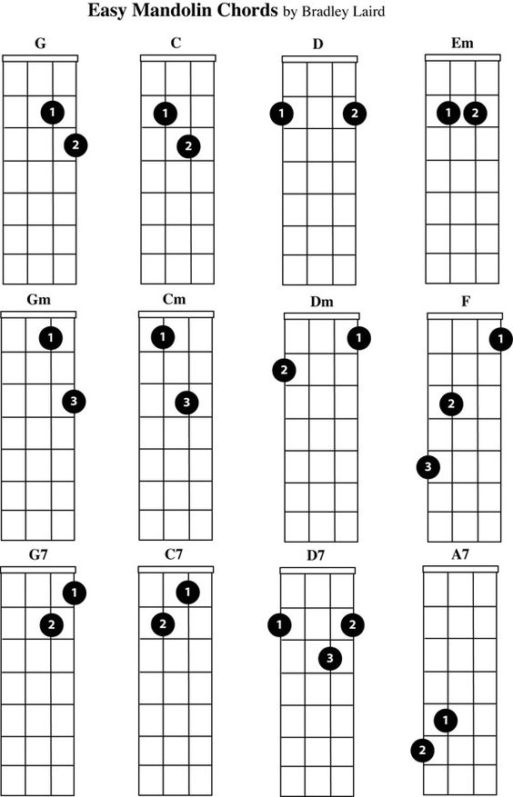 learn to play bluegrass banjo