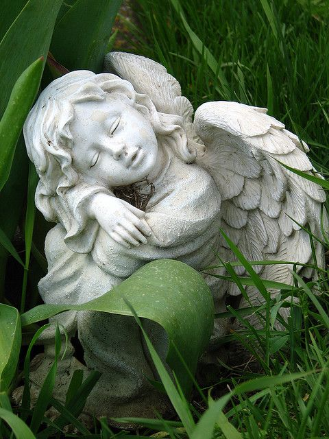 Sweet Cute Baby Boy Wallpaper Angel Garden Angels And Stones On Pinterest