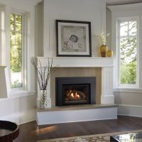 raised fireplaces | Gas Fireplace - classic, raised hearth ...