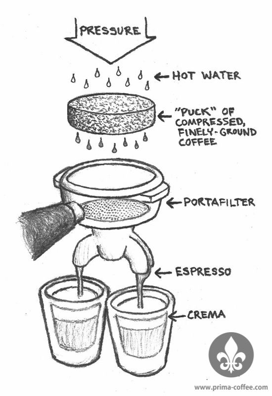 coffee maker diagram perfect cup of coffee