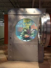 Our new office aquarium thanks to #Tanked | Our Work/Play ...