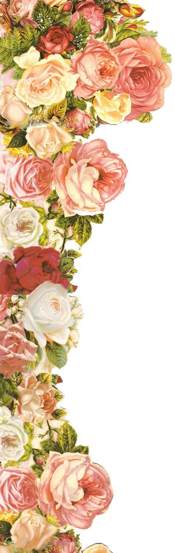 Elementos florais png resources pinterest ant 237 gua