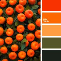 bright orange color, color matching in interior, color of ...