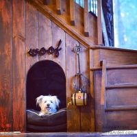Best dog house/bed ever.   Crafty Ideas   Pinterest ...