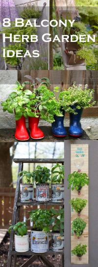 8 Balcony Herb Garden Ideas You Would Like to Try ...