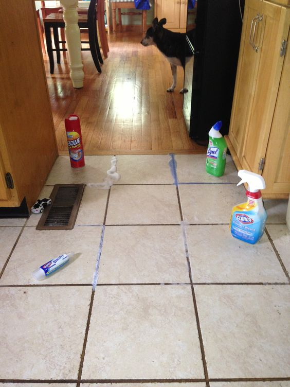 I Tried Four Methods To Clean The Grout On My Kitchen Floor. Lysol