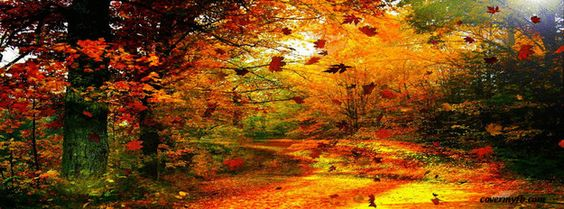 Hello Fall Wallpaper Macbook Pro Autumn Facebook Covers For Facebook Leaves Fall