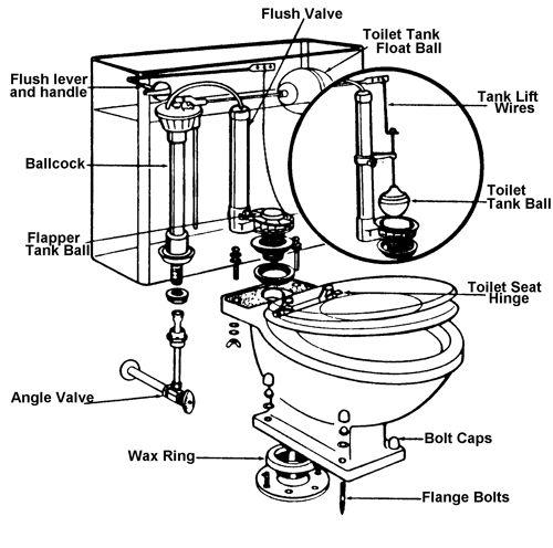 parts diagram for the line toilets