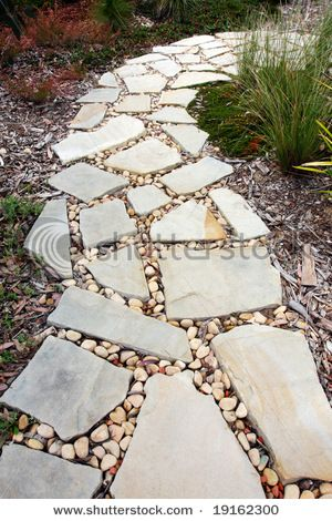 An Idea Of Something To Put Between Our Flagstone Gtgt Garden