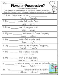 Plural Possessive Nouns Worksheets For 4th Grade