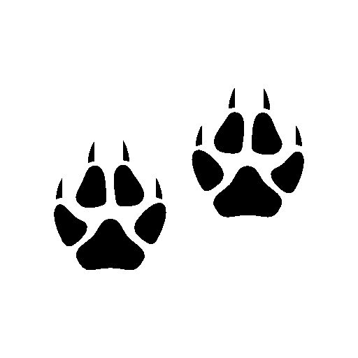 Cute Paw Print Wallpaper Fox Footprints Free Icon Signage Zoo Pinterest Icons