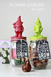 DIY Flower Garden in a Jar