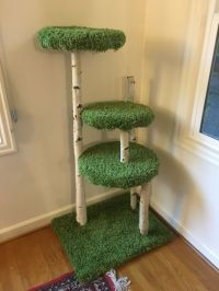 Cat tree I made! Easy DIY! | How to Spoil a Cat ...