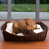 Faux Leather Dog Bed Ideas - Spiffy Pet Products