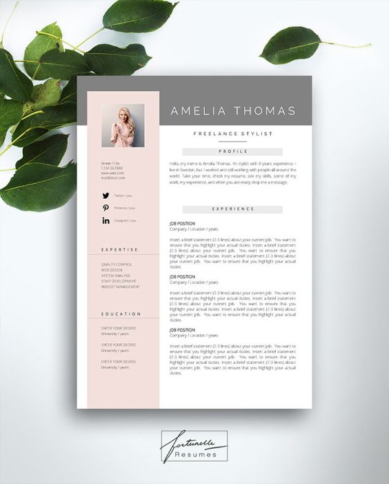 the amelia resume template