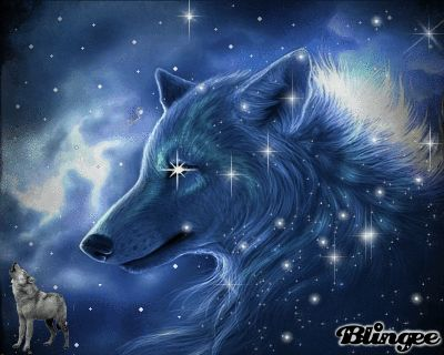 Ice Wolf 3d Wallpaper Download Cool Moving Wolf Cool Wolf Interesting Items