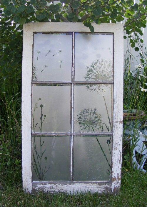 antique window with etched glass vinyl dandelion design