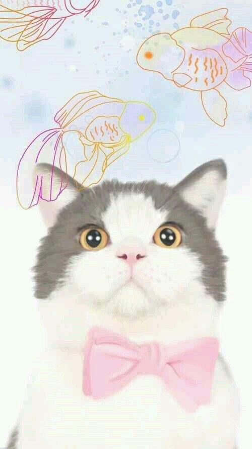 Iphone 6 Cute Shelf Wallpaper Grey White Pink Bowtie Cat Iphone Phone Wallpaper