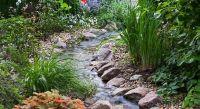 Stream running through backyard garden | Ponds and Water ...