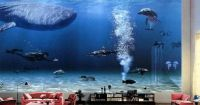 Bill Gates Living Room Aquarium. Wow.