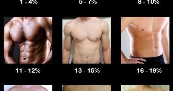 body fat chart for men