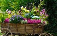 15 Unusual Flower Beds and Container Ideas for Beautiful ...