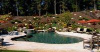 Pool Built Into Hill www.environmentalpools.com | Backyard ...