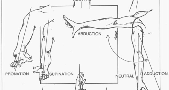 body part diagram for workplace injuries