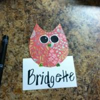 25+ best ideas about Owl Door Decorations on Pinterest ...