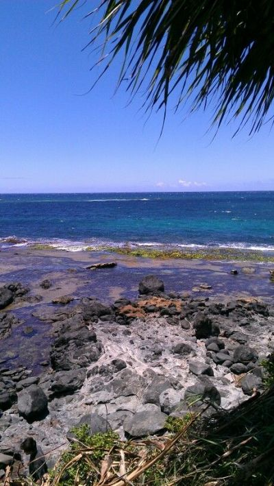17+ best images about Maui Lifestyle Inspiration on ...