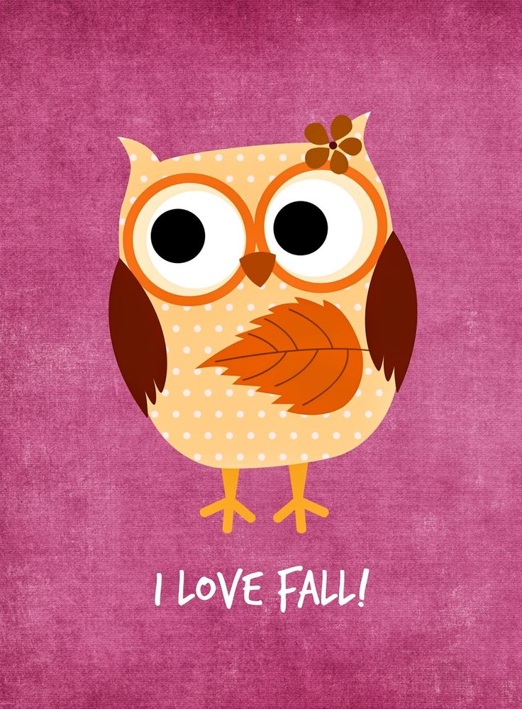Sonic Fall November Wallpaper 17 Best Ideas About Owl Printable Free On Pinterest Owl