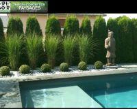 25+ best ideas about Arborvitae Landscaping on Pinterest ...