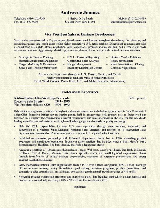Msi Worldwide Vice President Learning Development Resume