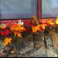 Fall window boxes | fall decorating | Pinterest | Window ...