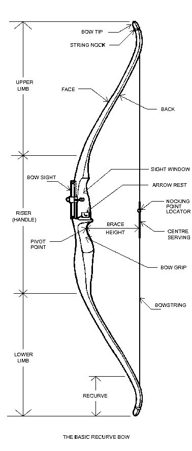 archery shooting diagram