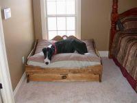 25+ best ideas about Great Dane Bed on Pinterest | Doggie ...