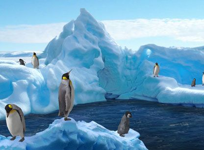 Animated Halloween Wallpaper Windows 7 Free 3d Moving Screensavers Cute 3d Animated Penguins