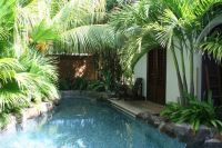 1000+ ideas about Pool Plants on Pinterest | Plants ...