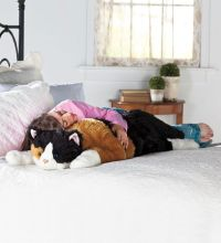 1000+ ideas about Body Pillows on Pinterest   Pillow ...