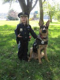 763 best images about good dog costumes on Pinterest