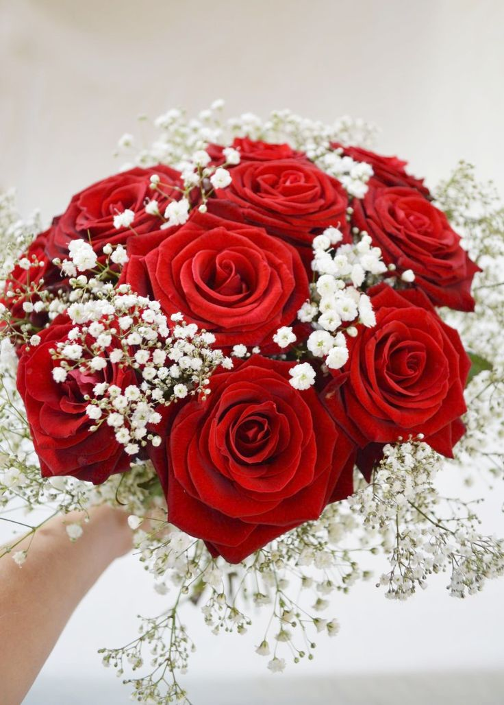 Gyp Flowers Baby's Breath A Beautiful Bouquet Of Red Roses And Gypsophila. | Fresh
