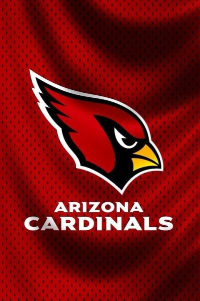 25+ best ideas about Arizona cardinals wallpaper on Pinterest | Arizona cardinals football ...