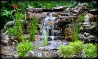 18 best images about PONDS on Pinterest | Pond waterfall ...