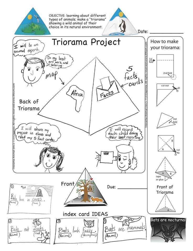 3d cell diagram project ideas