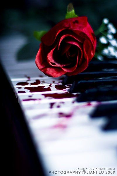Vampire Love Quotes Wallpaper 90 Best Images About Curse Of Bloody Rose On Pinterest