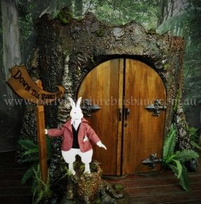 Falling Down The Rabbit Hole Wallpaper 23 Best Images About Emma S Alice In Wonderland Doors On